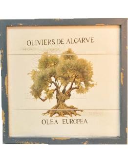 Принт на дереве «Старая олива»